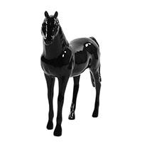 horsy5