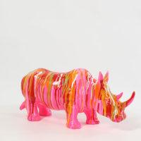 rhinocéros-multicolore