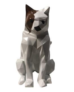 chat-blanc-1